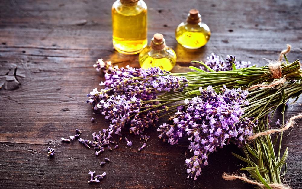 Bio-Massagen Aromamassage Annette Seier Greven