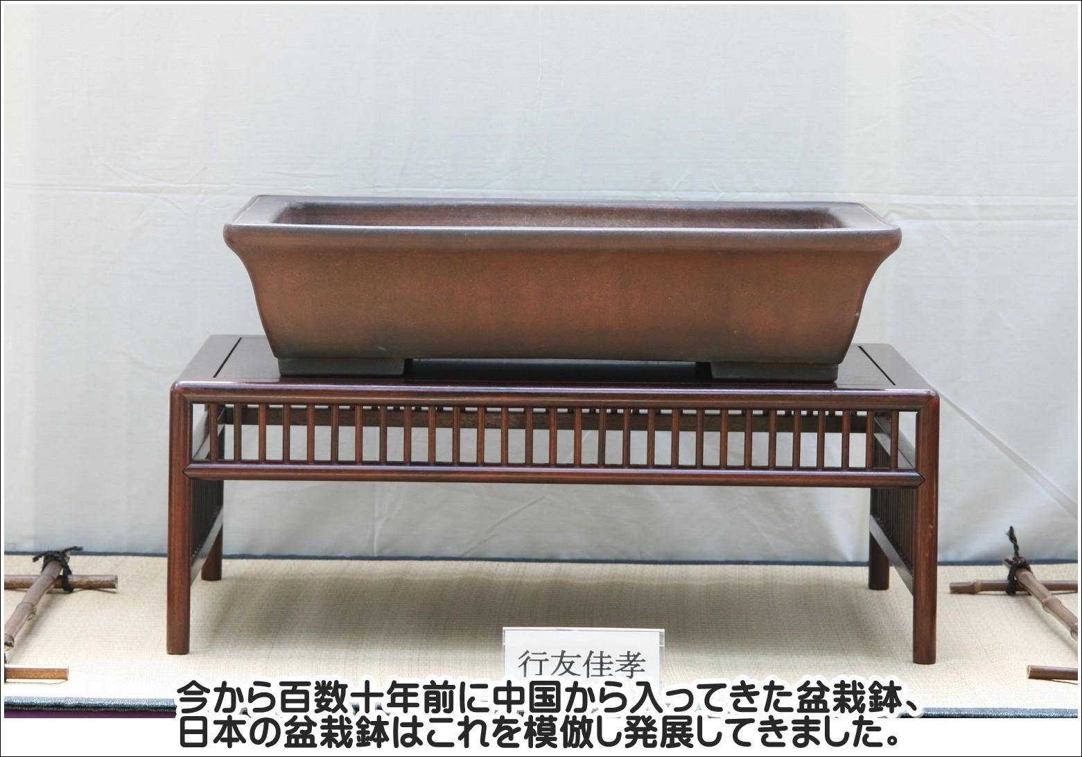 今から百数十年前に中国から入ってきた盆栽鉢、日本の盆栽鉢はこれを模倣し発展してきました。