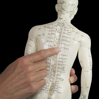 Eine Frau zeigt die Akupunkturpunkte und Meridiane auf einem kleinen Modellmensch