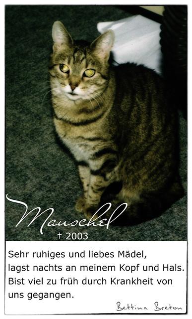 Mauschel