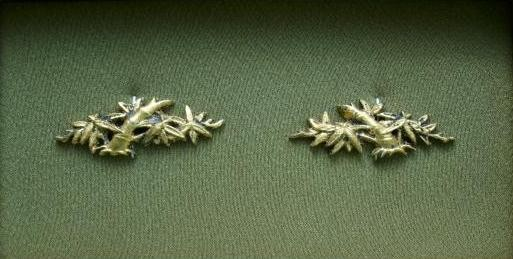 Bamboo Leafs Stalk - Brass golded Menuki : Not for Sale !