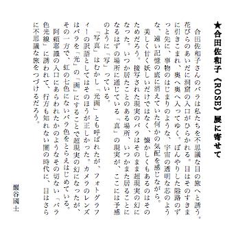★合田佐和子《ROSE》展に寄せて(巖谷國士、2012年9月)