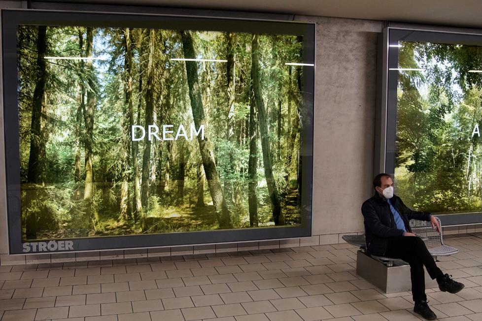 """""""Forest Dream"""" - Fotoinstallation, Neumarkt, Köln von Ellen Bornkessel, Installationsfoto- Alex Schnell"""