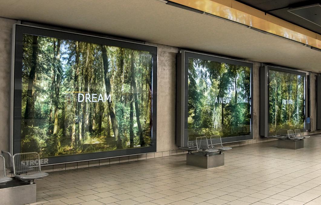 """""""Forest Dream"""" - Fotoinstallation, Neumarkt, Köln von Ellen Bornkessel, Installationsfoto-Ellen Bornkessel"""