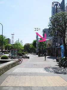 11.桜並木をぬけると、右手にお店が見えてきました!