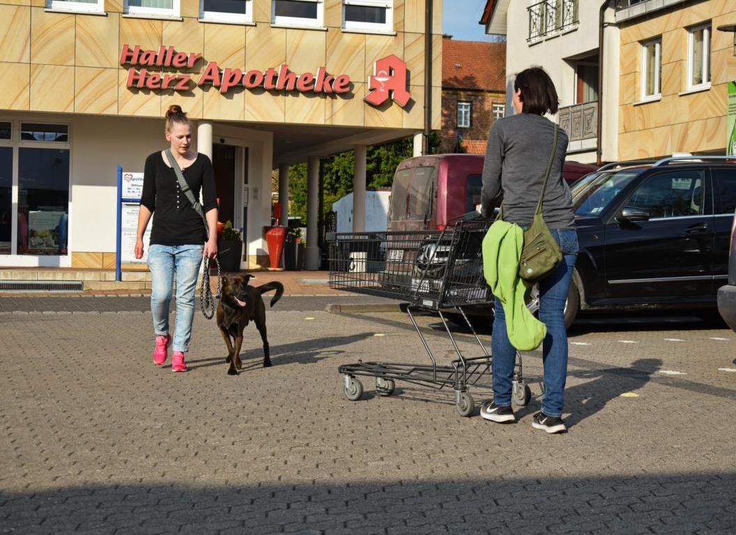 Ungestüme Frauen mit Einkaufswagen nehmen keine Rücksicht.