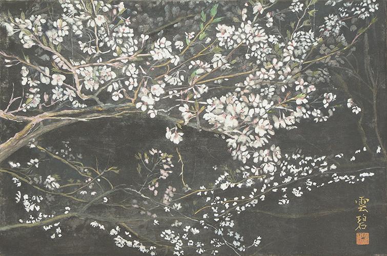 夜桜     27.3x41.0