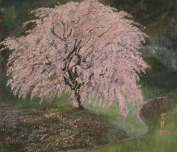 桜図         45.5x53.0