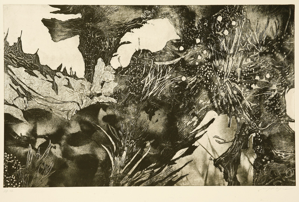 花盛りのように 銅版画  45x71cm