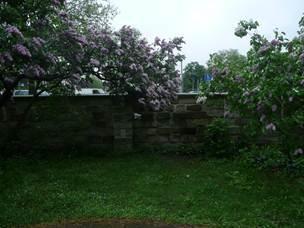 """Nachher: Das bekannte Erich Kästner Denkmal """"kleiner Junge"""" ist nun auch  von der Parkseite  sichtbar und begehbar. Es ist ein sehr beliebtes Fotomotiv für die Besucher"""