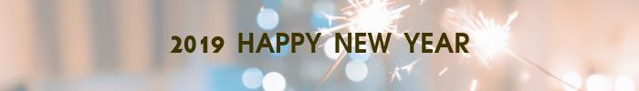 2019年あけましておめでとうございます。