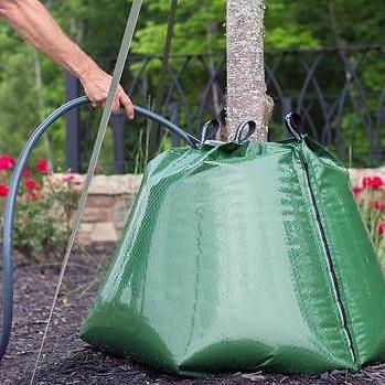 Bewässerungssack Watercoat 3