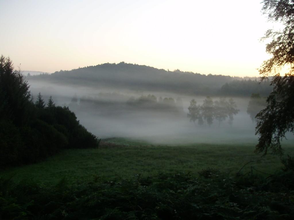 Brouillard au lever du soleil