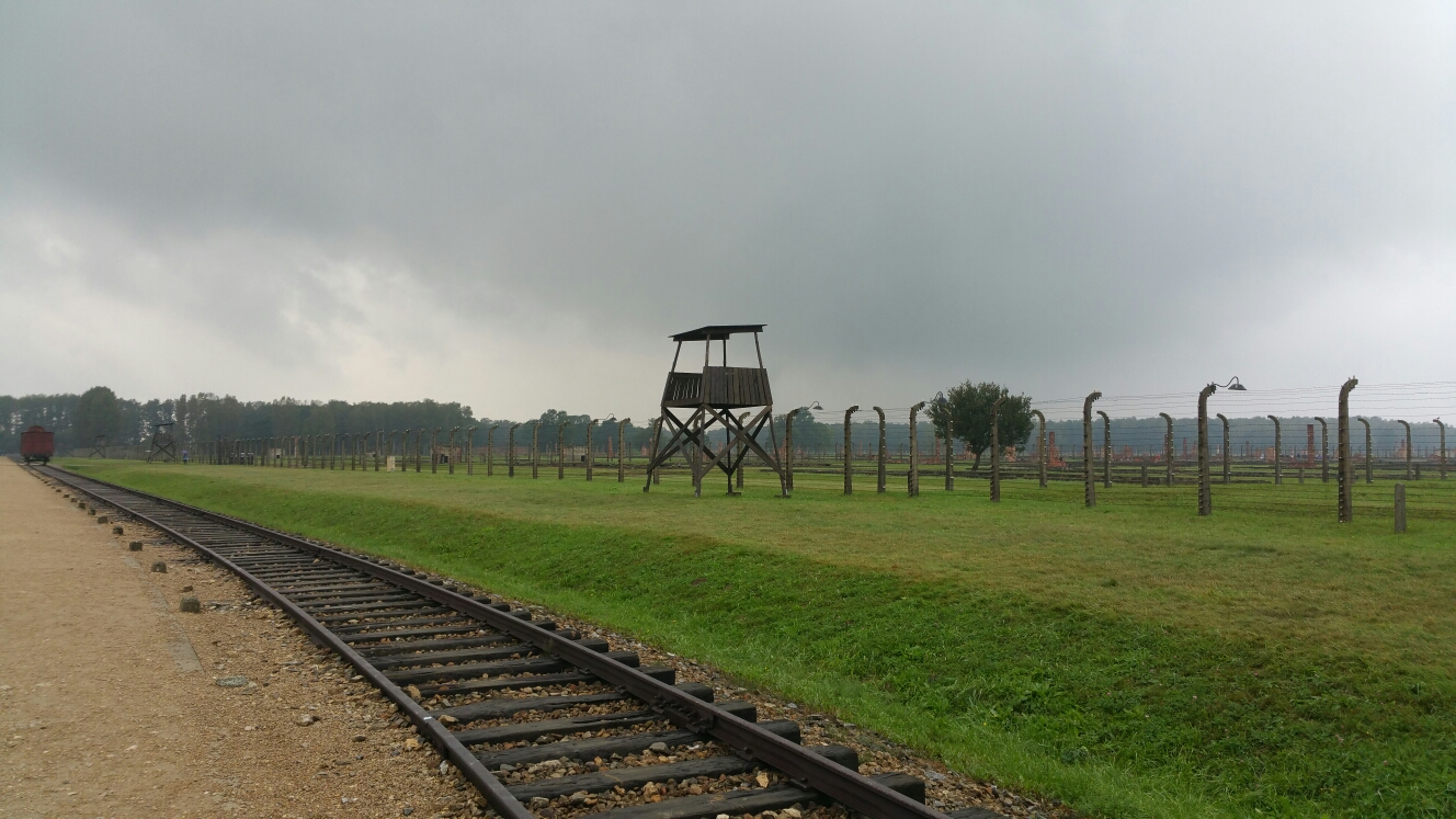 We watched Auschwitz: the Nazis and the Final Solution on Netflix