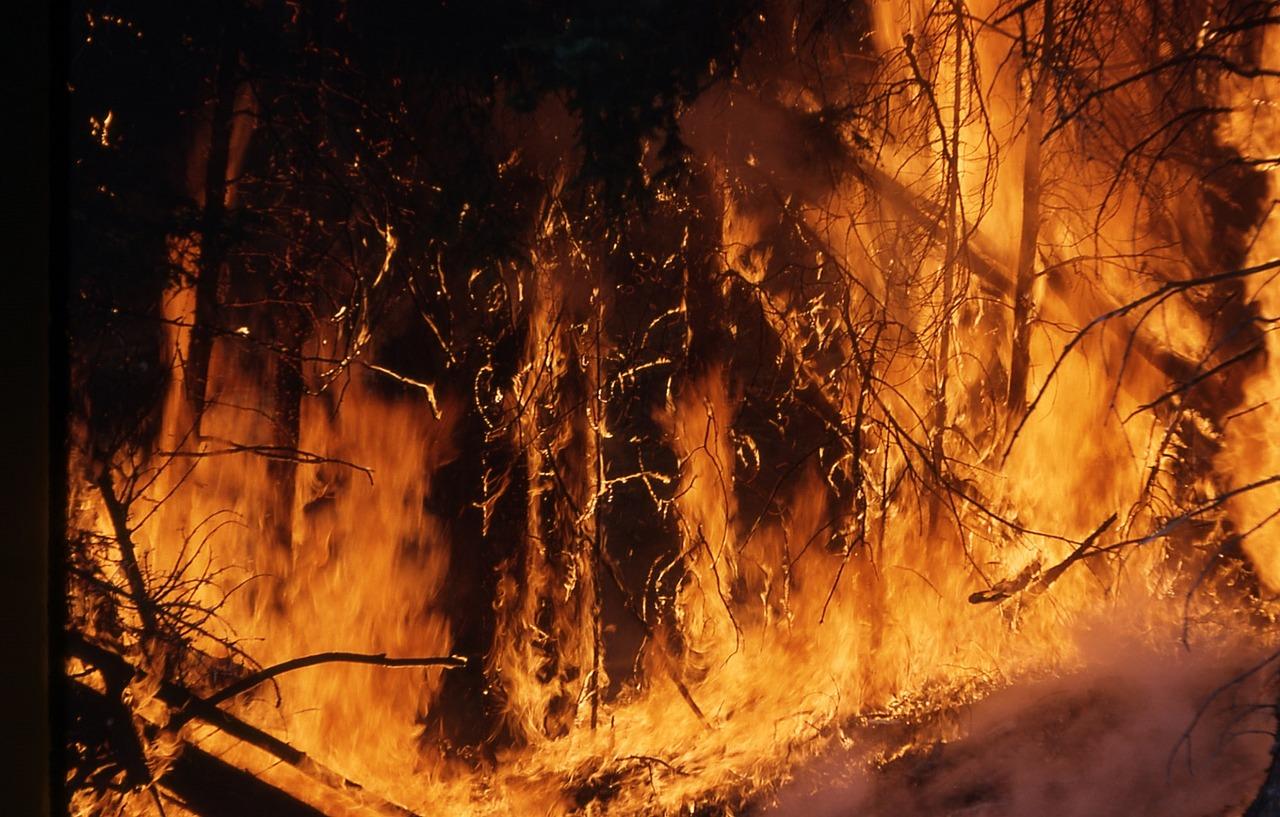 Les incendies se déploient en Sibérie