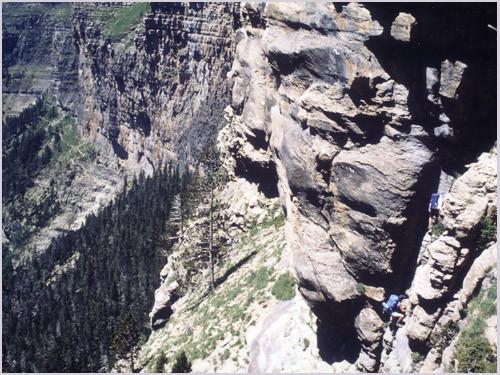 Canyon Nisclo cotatuero