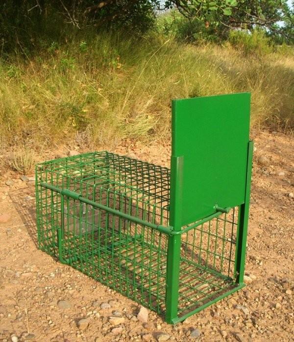 Jaulas captura conejos gp - Como cazar ratones en casa ...