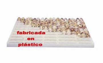 Bandejas incubadora gp for Bandejas para huevos