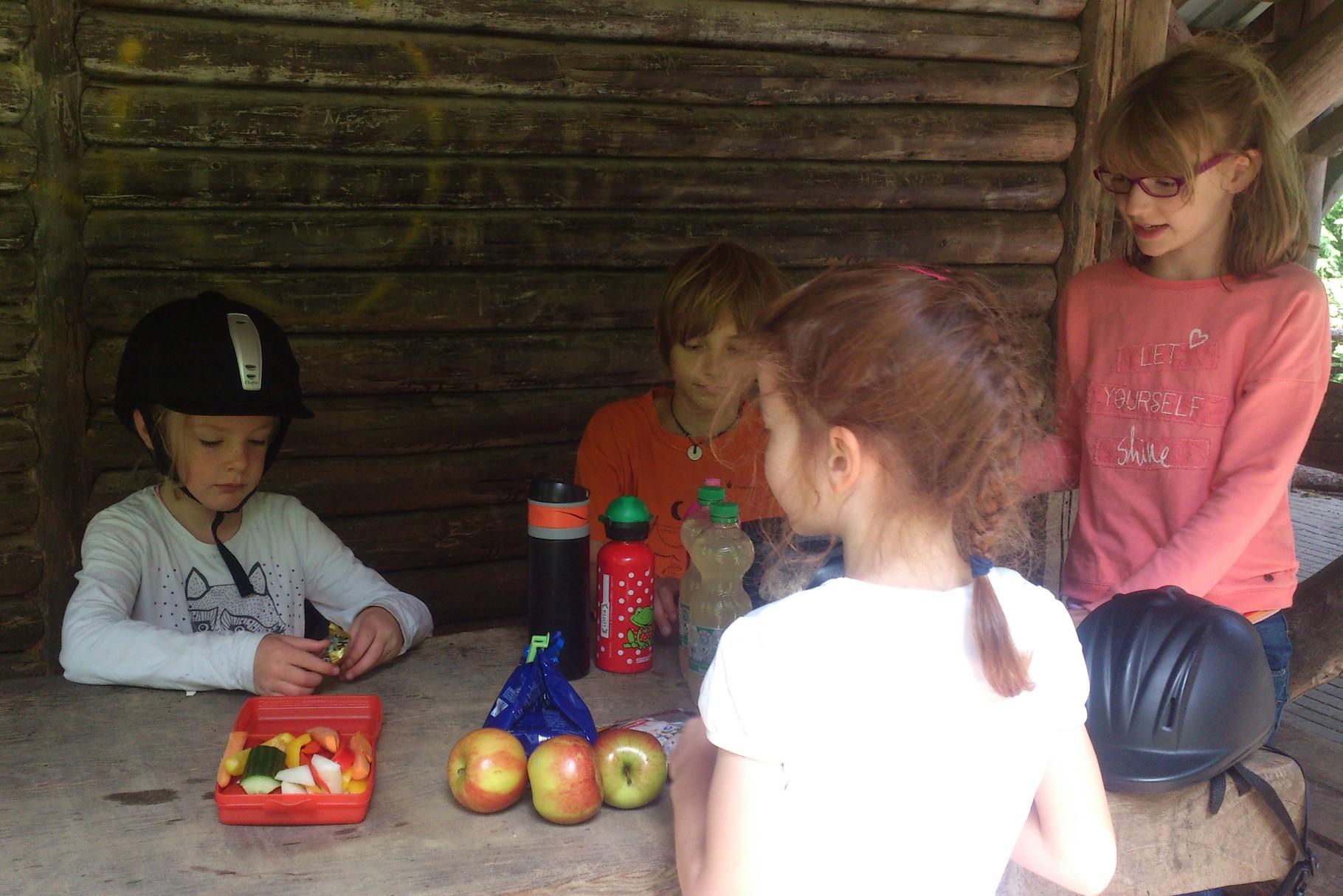Picknick beim Waldhaus