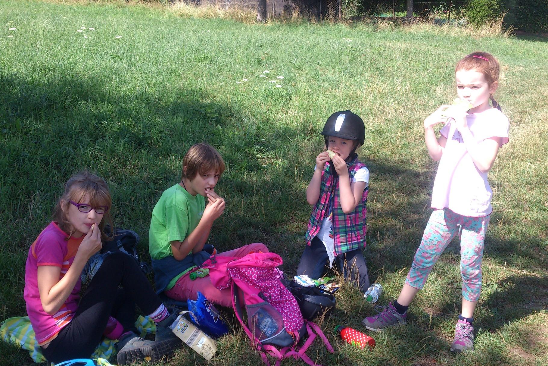 Picknick auf dem Schönberg
