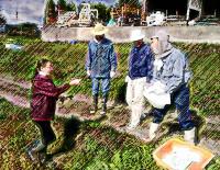 亀岡農園芸ボランティア