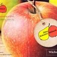Apfelernte im Rheinland