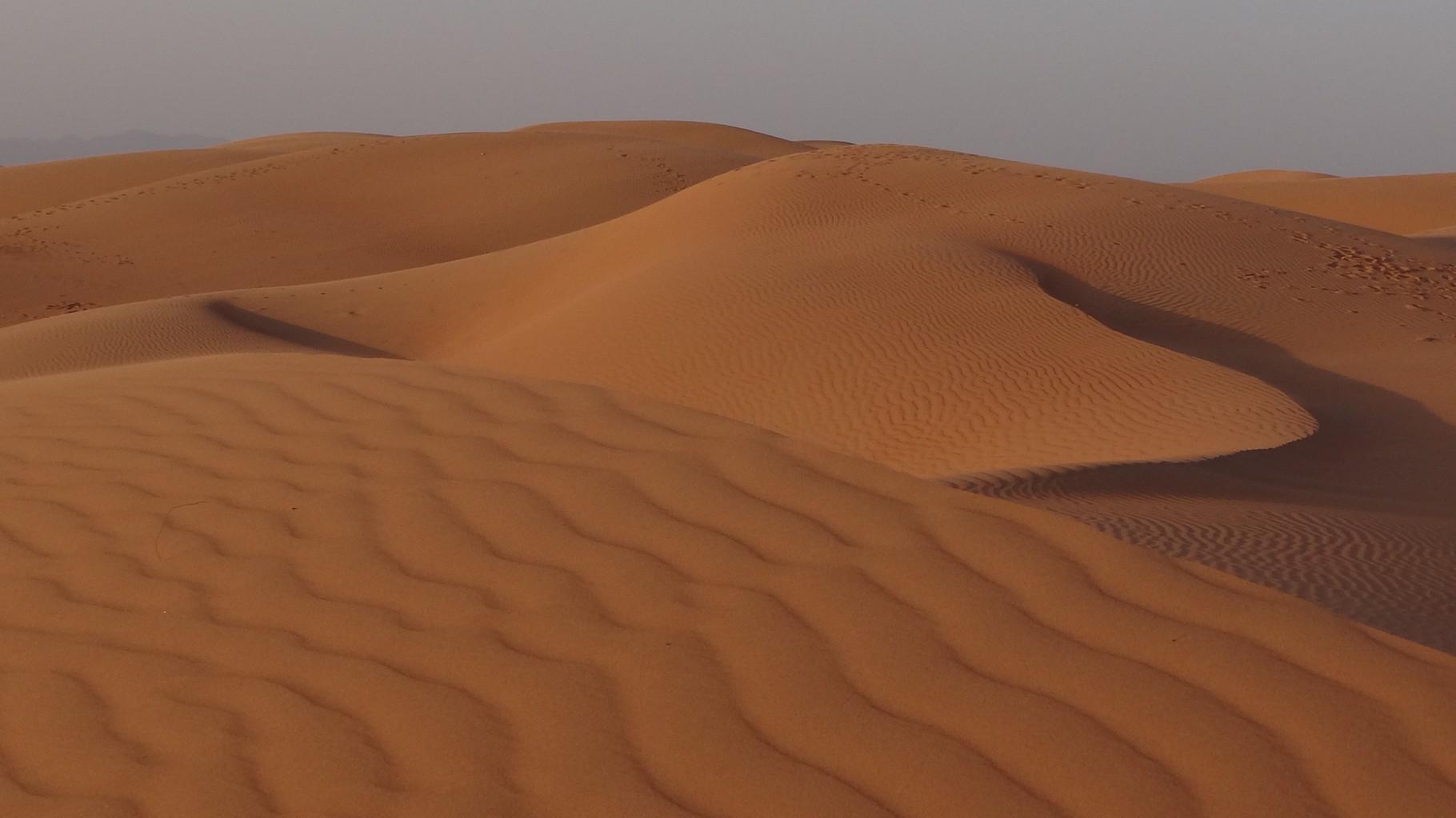 Dünen, Dünen und nochmals Dünen