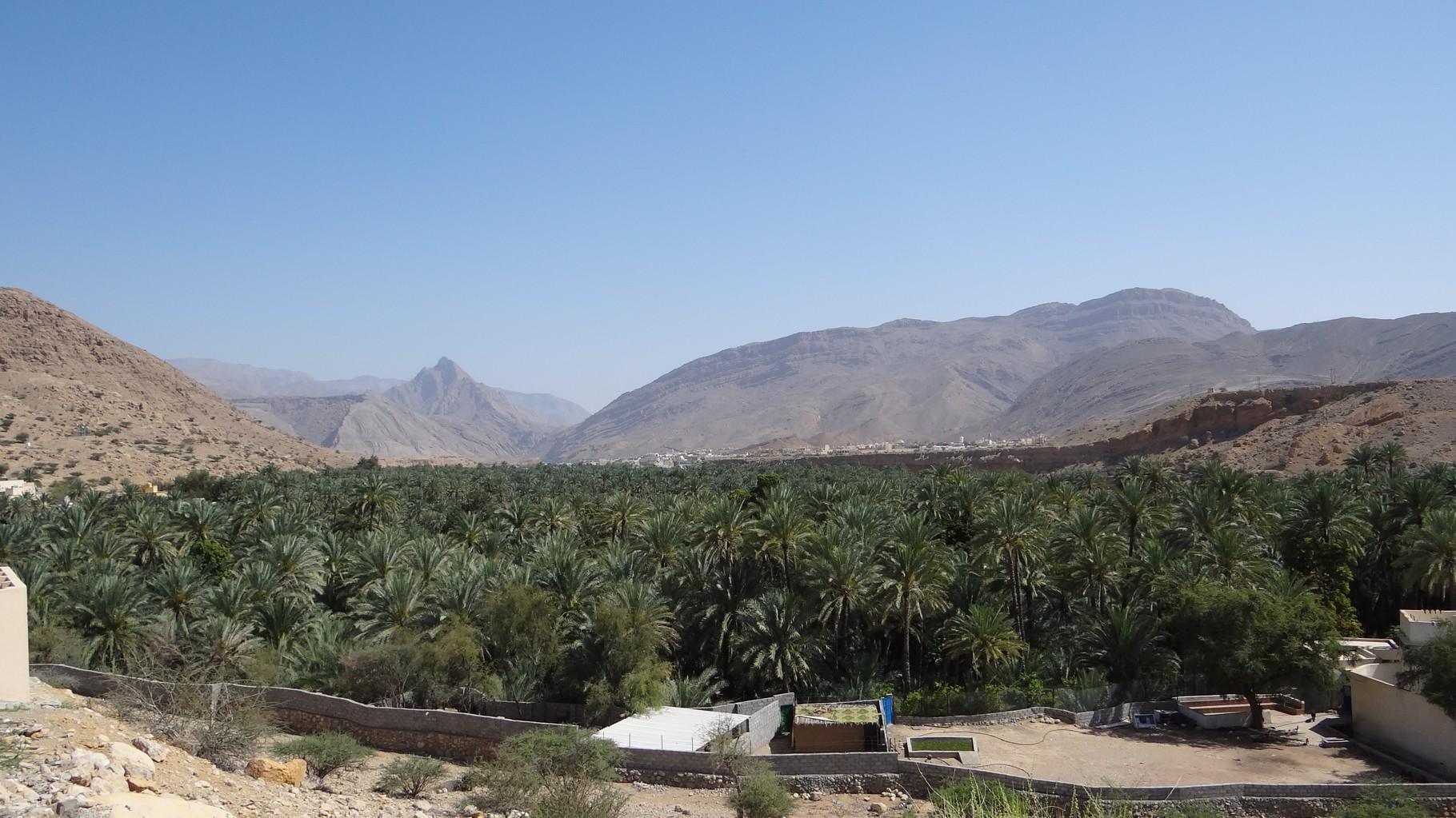 Aus dem Weg zum Wadi Bani Khalid