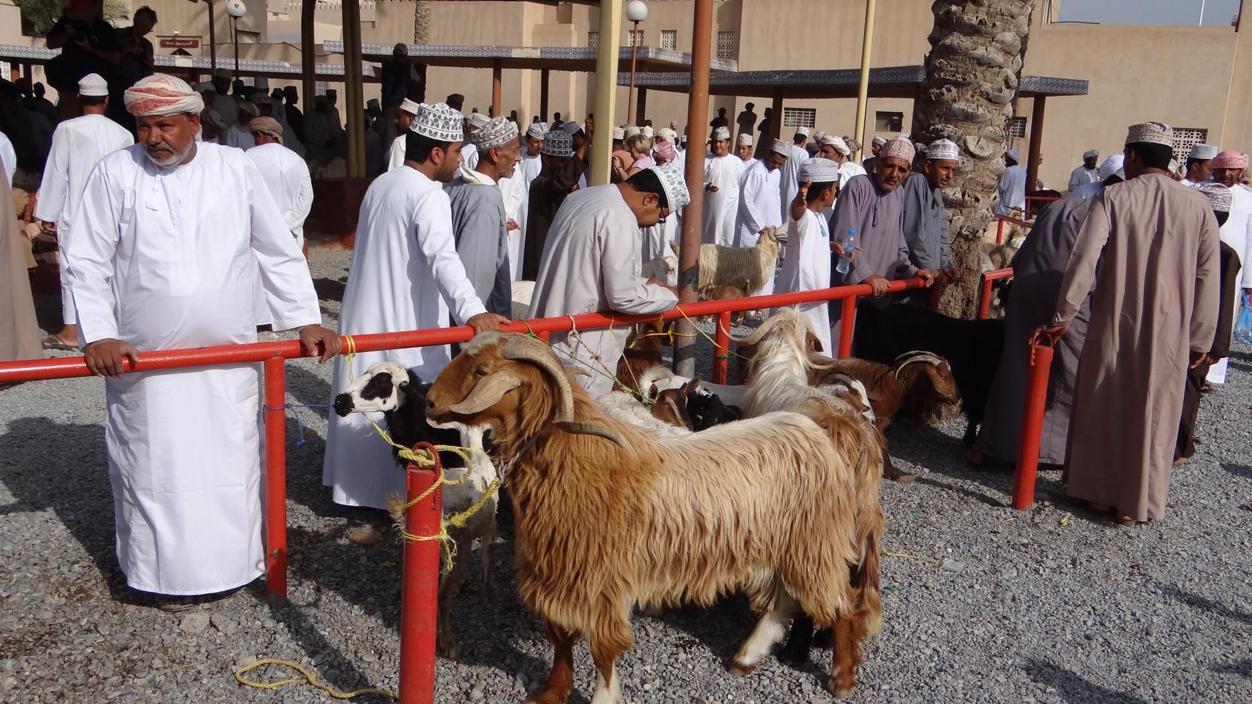 Am berühmten Tiermarkt von NIzwa