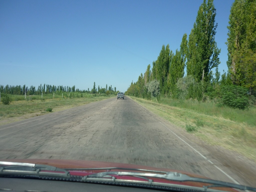 Viajando a General Alvear