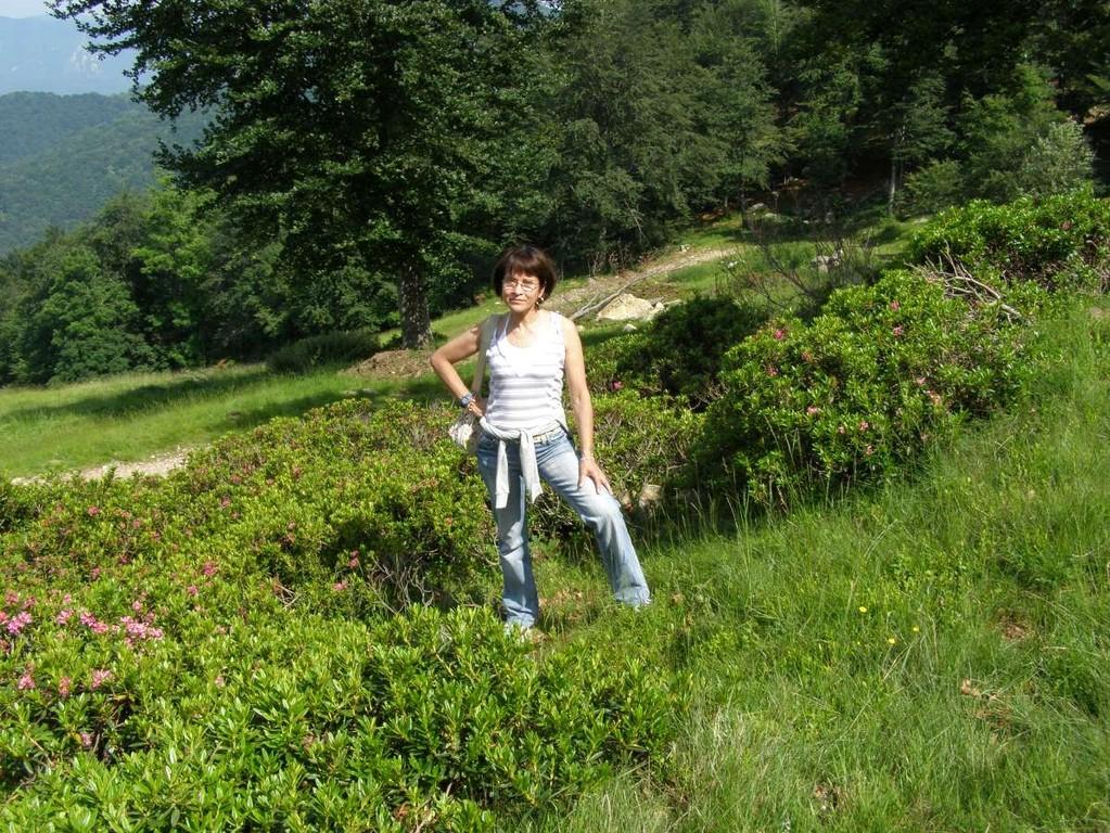 ALPE SACCHI - RODODENDRI - 13.06.2009