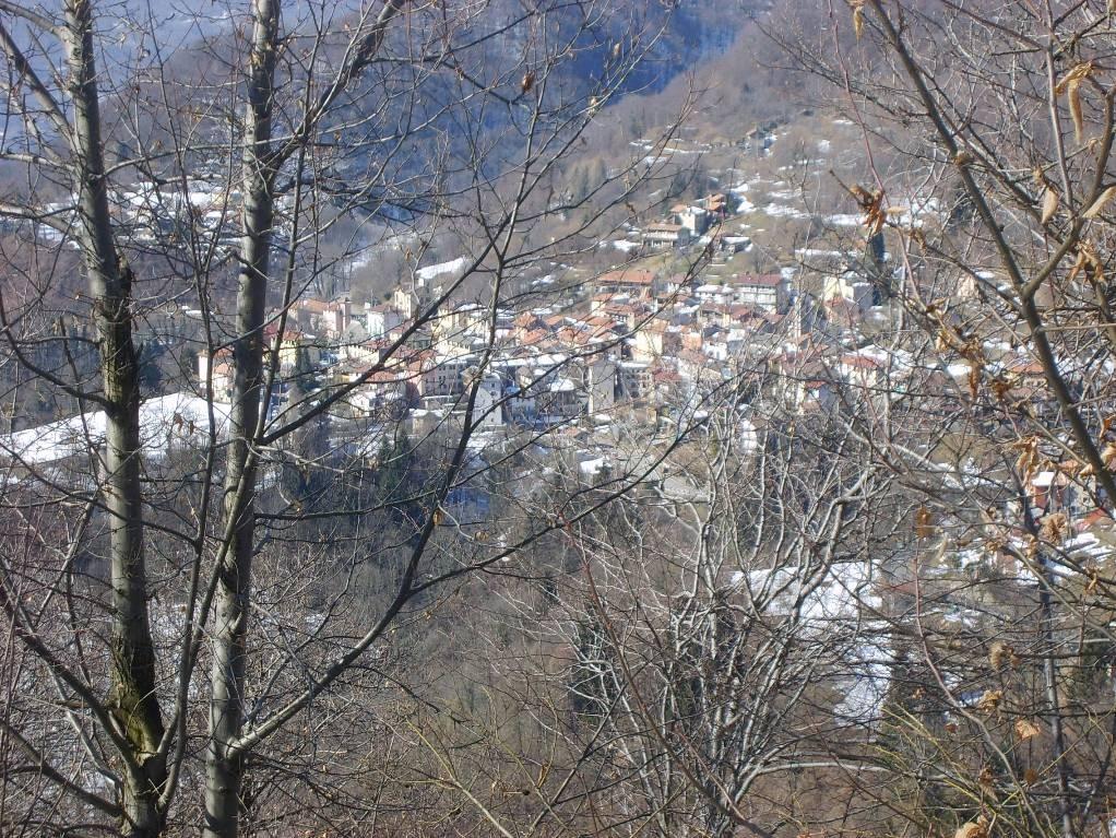CIVIASCO VISTO DALLA STRADA DELLA COLMA - 20.02.2009