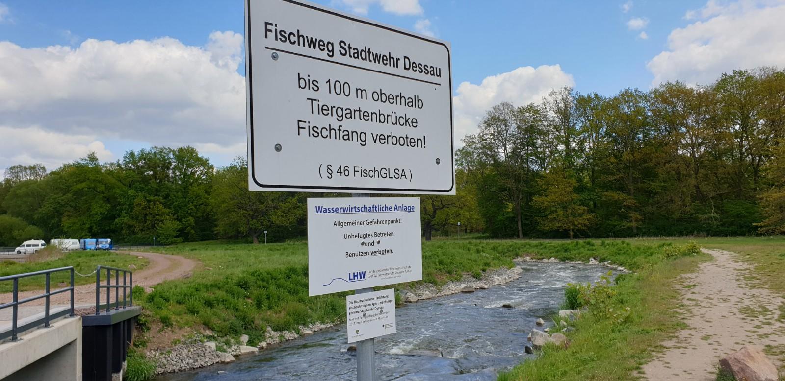 Vom MDR vor kurzem vorgestellt: Fischweg für 7,3 Mio €; leider ohne Kanupaß!