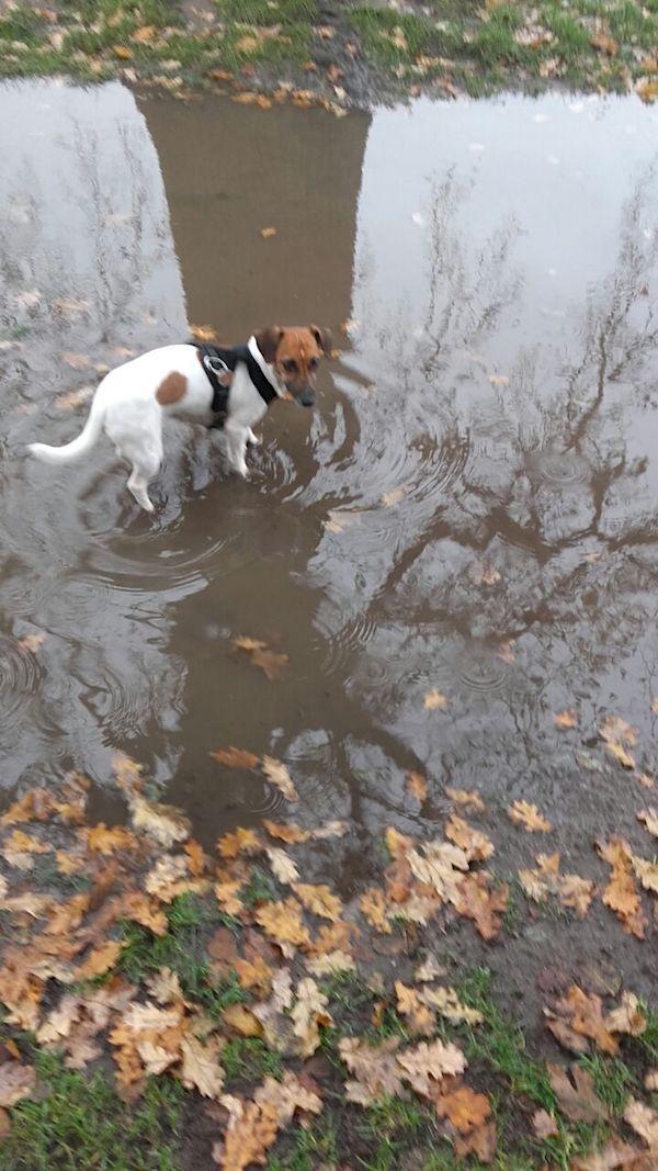 """Laila prüft schnell noch  die Wassertemperatur - """"eisig genug""""."""