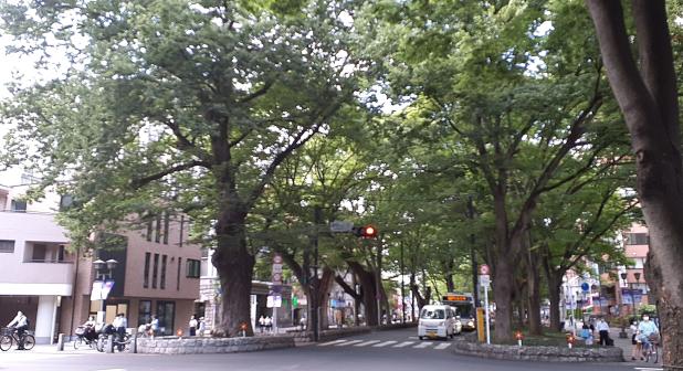 府中けやき並木通りと甲州街道の交差点