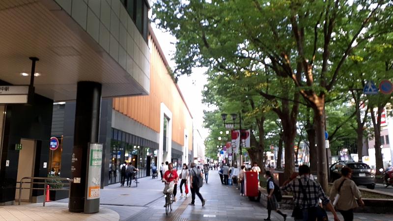 府中駅とけやき並木通り