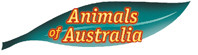 Bild: Logo von Animals of Australia als Werbefoto