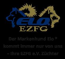 www.ezfg.de