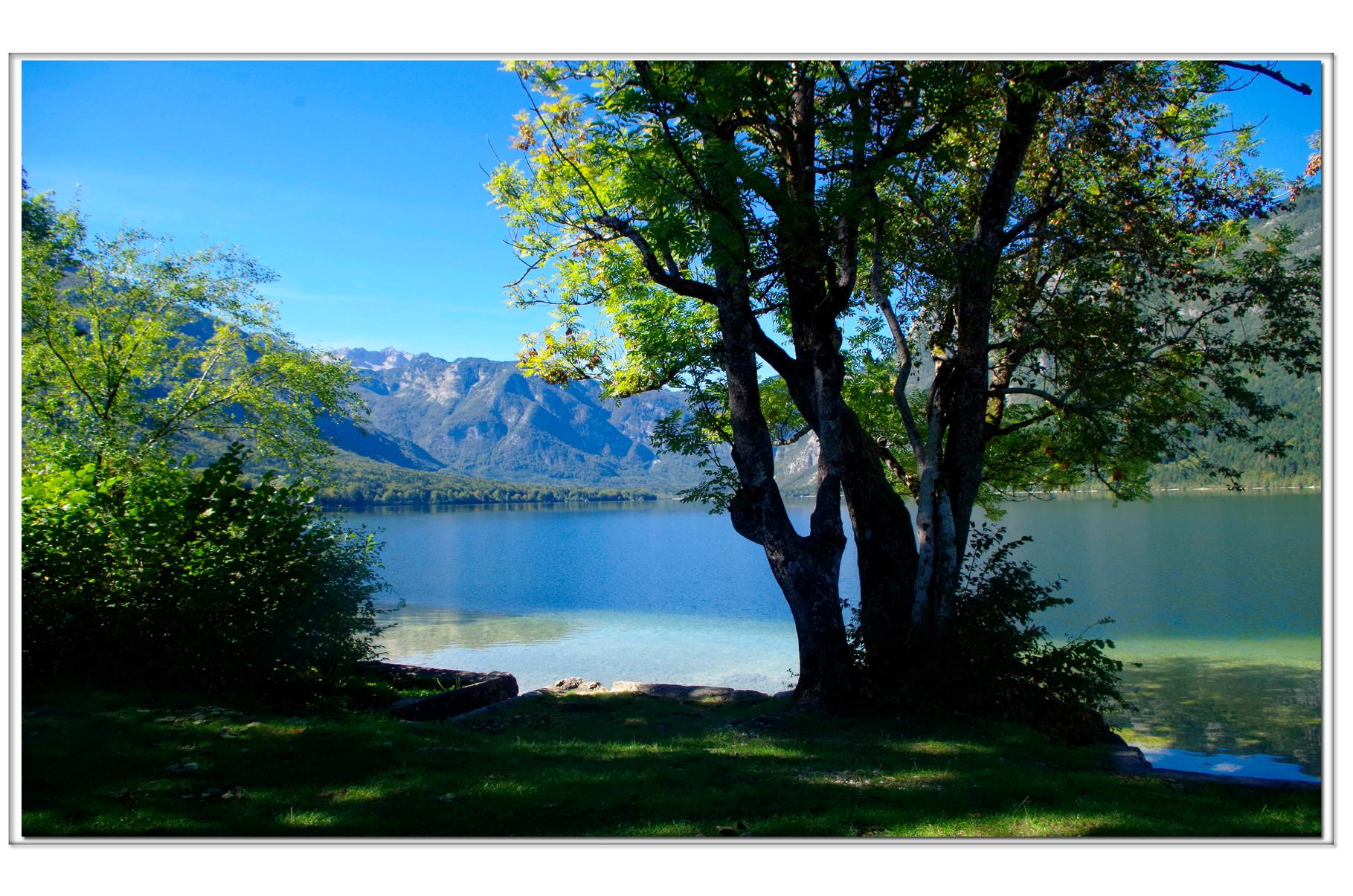 Bohinj See, Slowenien.... ein magischer Ort