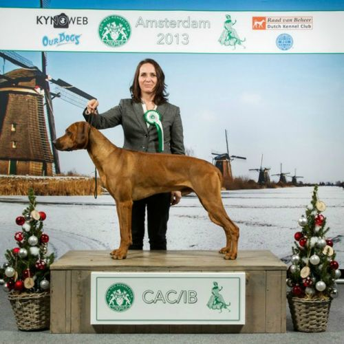 Amsterdam One Day Winner 2013 / CHAKA