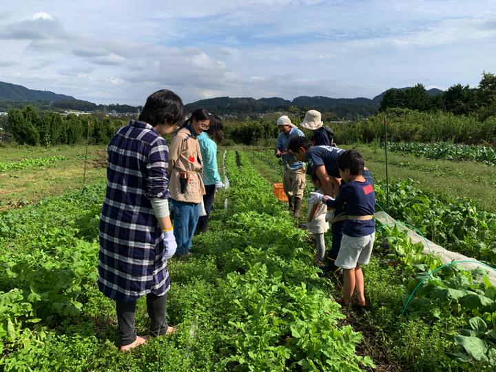 すどう農園への遠足2019