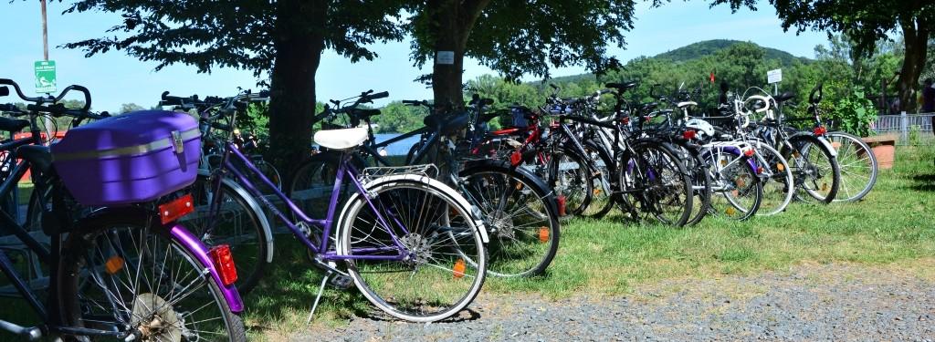 Schattige Parkplätze inklusive - auch für Radfahrer