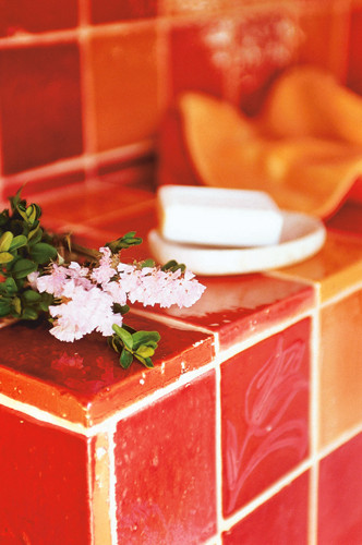 Badezimmer mit glasierter Terracotta