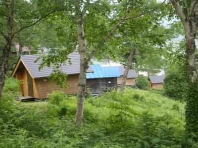 大自然の中にあるキャンプ場