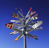 International Business Plan ARNI CONSULTIN GROUP