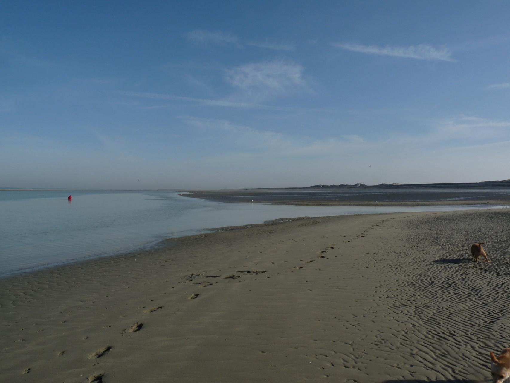 Balade au bord de la plage de Cayeux sur Mer ©milou-en-baie