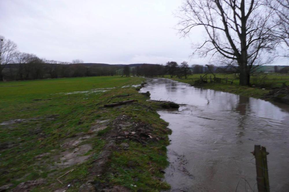 An einigen Stellen hat der Wasserstand den Grenzwert bereits überschritten. Alte Hindernisse verändern die Strömung und das wirkt sich negativ auf das Treibgut aus.