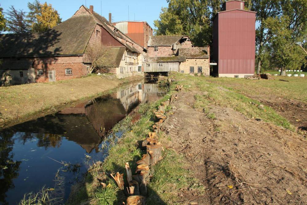 Hier war der Deich gebrochen. Mit eingerammten Bäumen und Bodenaushub wurden erste Reparaturen vorgenommen Erst nach einem Teileinstau konnte die Standfestigkeit des Mühlengrabens beurteilt werden.