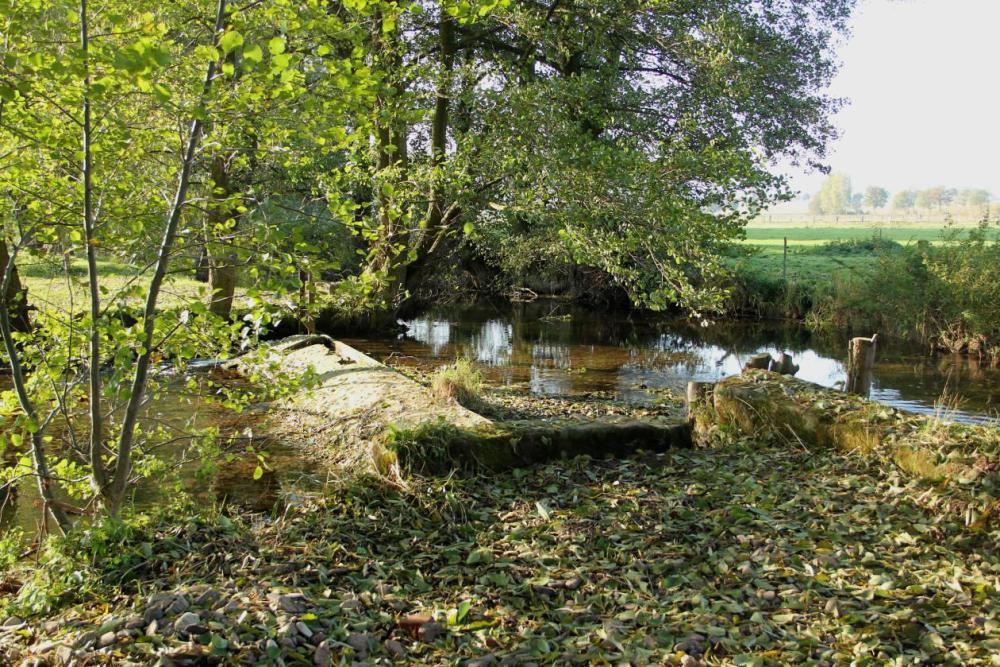 Das Streichwehr bei Niedrigwasser. Aufgenommen am 23.10.11