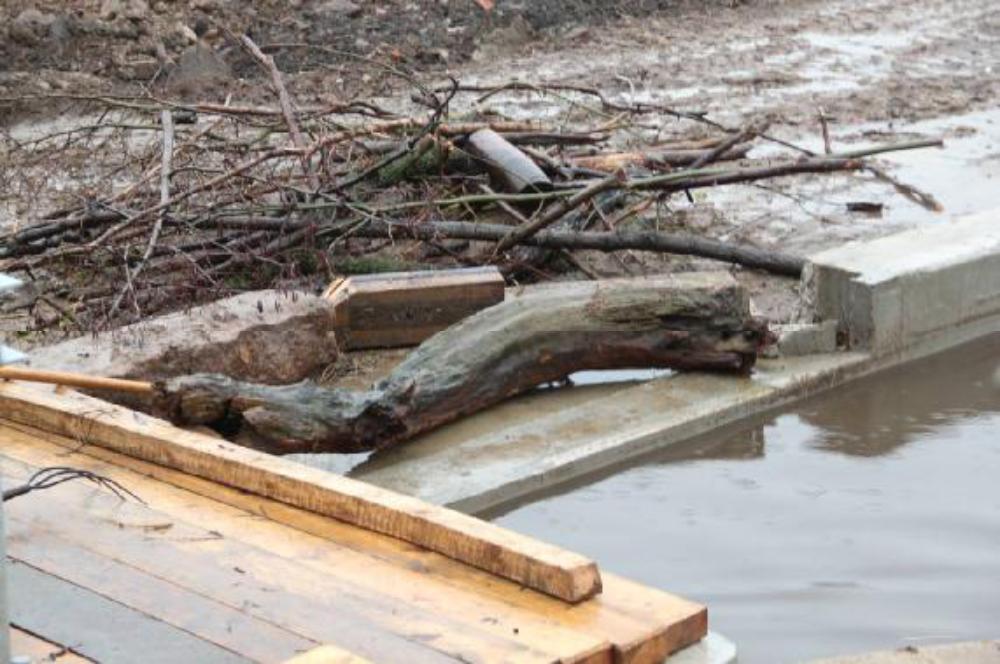 Kaum vorstellbar in welcher Menge und Größe Treibholz angeschwemmt wird. Setzt sich solch ein Kamerad erst einmal in der Anlage fest, wird es problematisch, weil sich der Durchströmquerschnitt zunehmend verkleinert und das Wasser zurück hält.